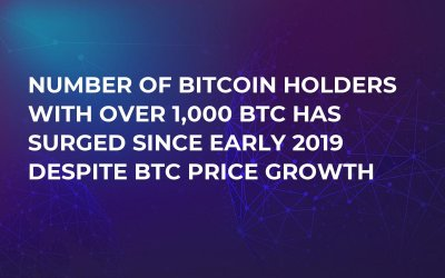Number of Bitcoin Holders with Over 1,000 BTC Has Surged Since Early 2019 Despite BTC Price Growth