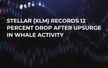 Stellar (XLM) Records 12 Percent Drop After Upsurge in Whale Activity